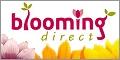 bloomingdirectgeneric120x60