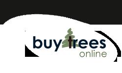 buy-trees-online-logo
