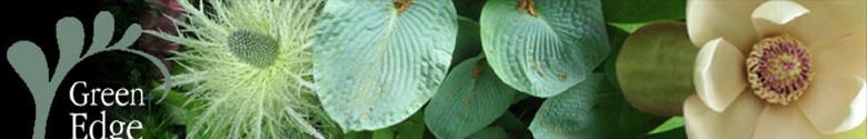 greenedgegardendesignstrip1