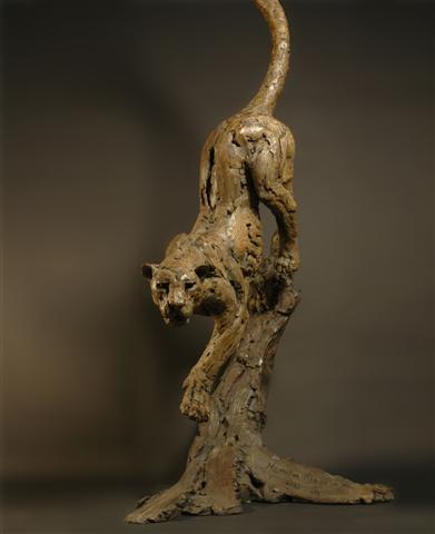 hamish_mackie_leopard-tree-new-1_small