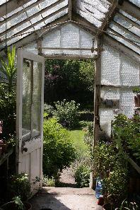 istockenglishgreenhouseinsummer21june2006_1
