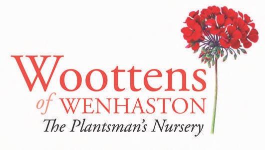 woottens_woottensnewlogoweblow_res